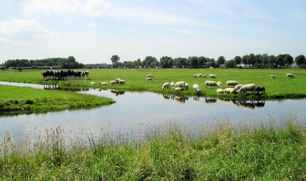 Akersloot Klaas Hoorn en Kijfpolder, veenpolder tussen dorp Akersloot en Alkmaardermeer