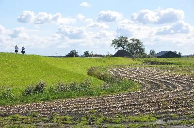 Oude zeedijk in de polder bij Assendelft
