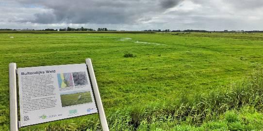 Buitendijks weid - Castricum